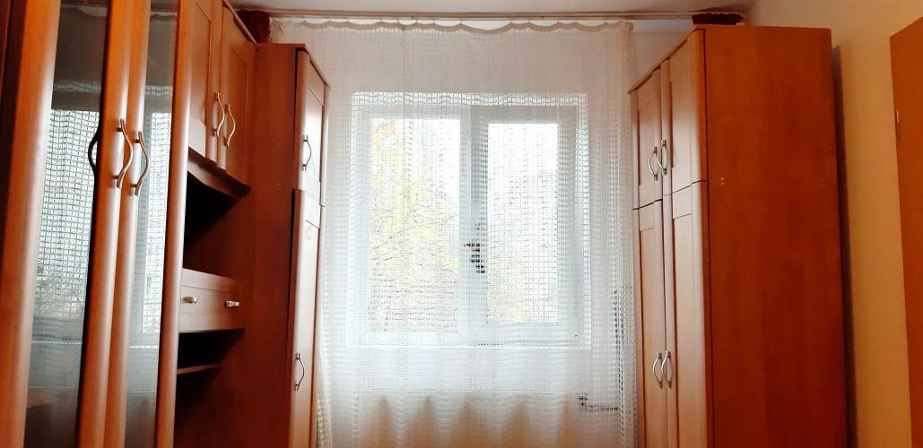 Caut colega apartament zona dacia 100 euro