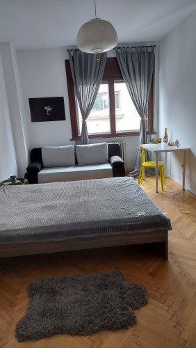 Free room in the city center
